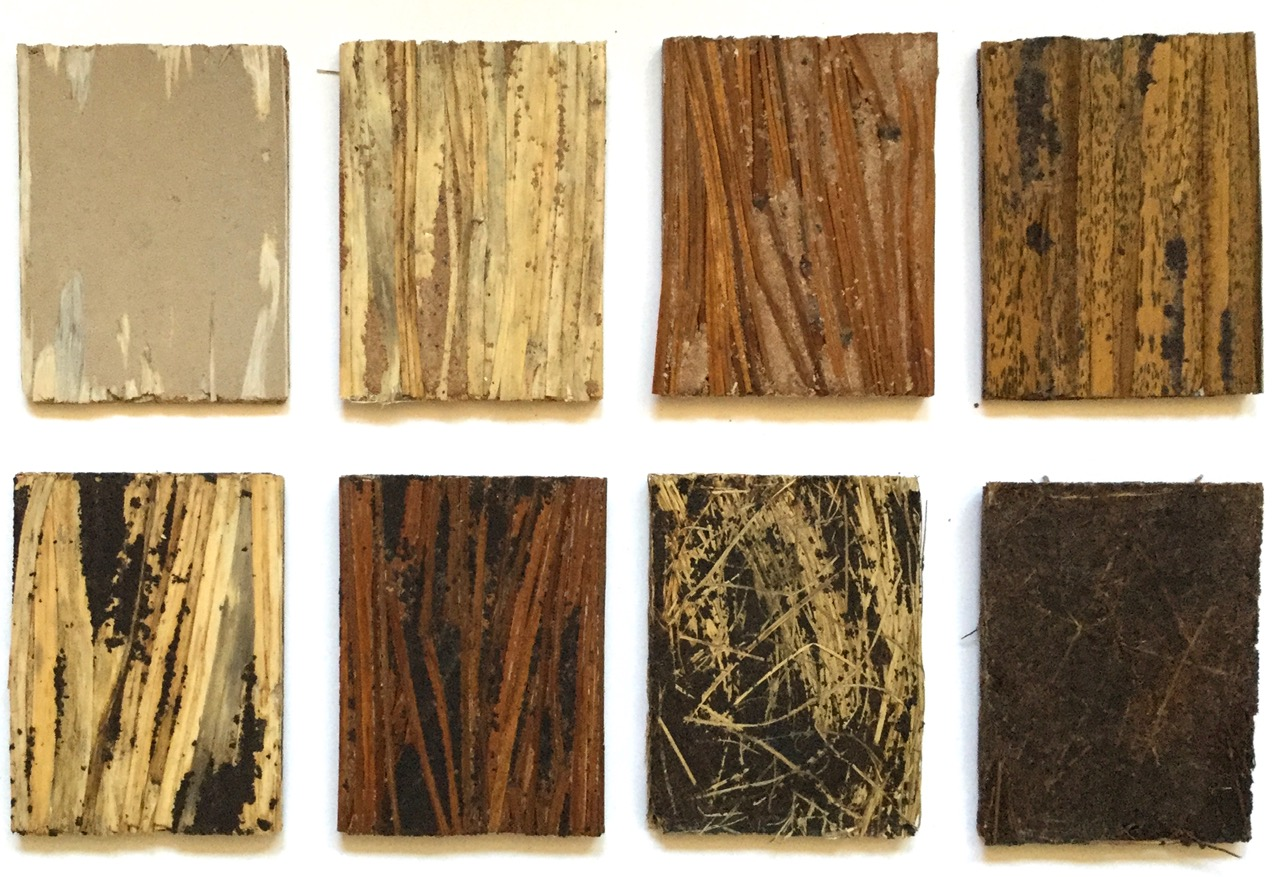 samples made from natural materials